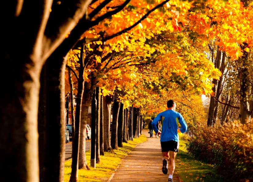 Exercising in theFall